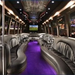 20 Passenger Limo Party Bus