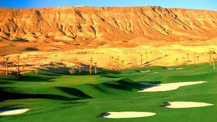 Bear's Best Golf Club 6