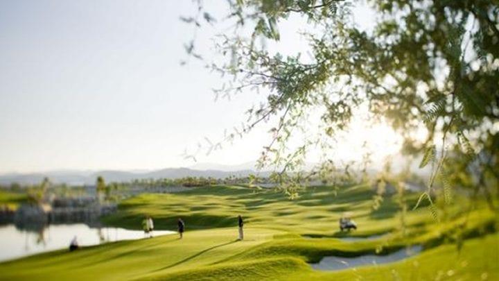 Coyote Springs Golf Club 5