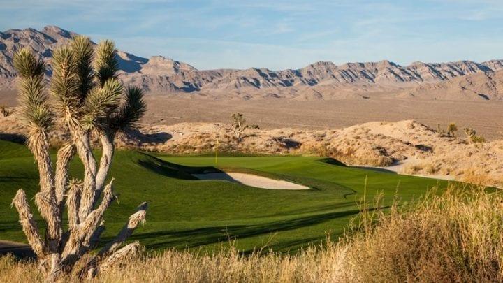 Las Vegas Paiute Golf Club Wolf Course 14
