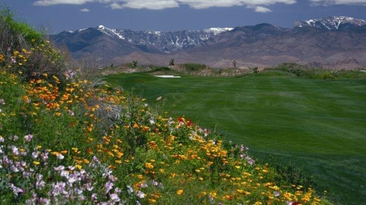 Las Vegas Paiute Golf Club Wolf Course 16