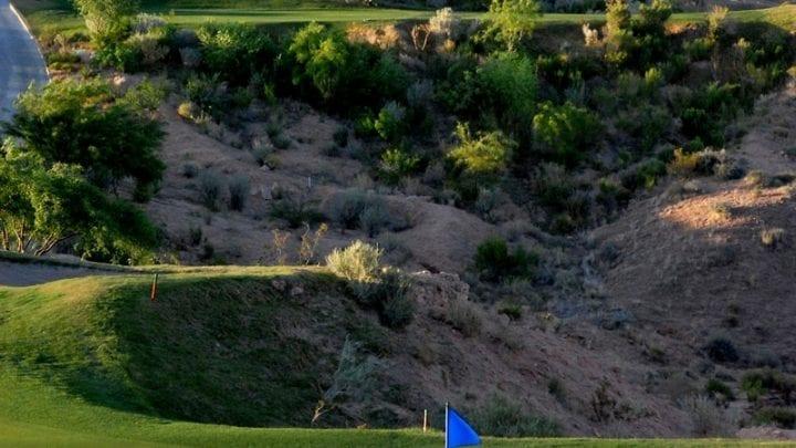 Oasis Golf Club Palmer Course 7