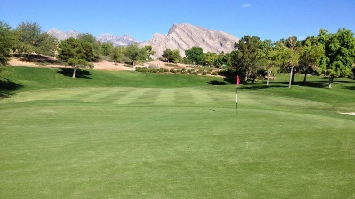 Palm Valley Golf Course 10