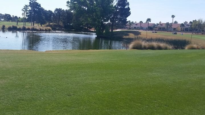 Palm Valley Golf Course 3
