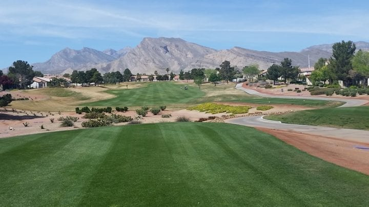 Palm Valley Golf Course 5