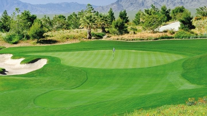 Primm Valley Desert Golf Course 2