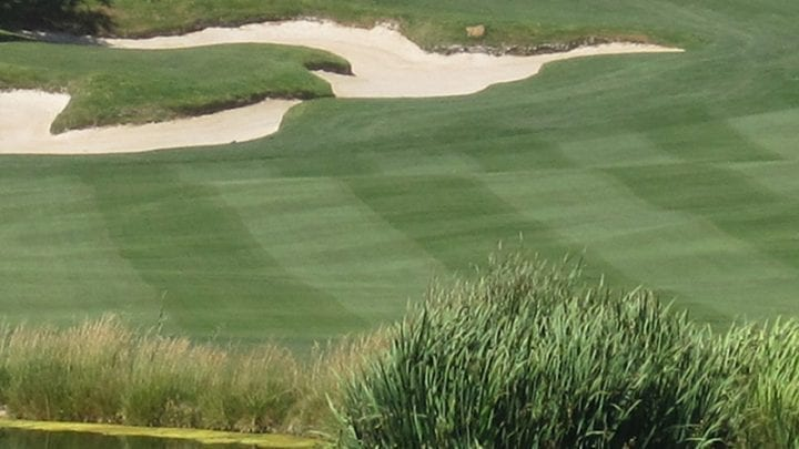 Primm Valley Lakes Golf Course 5